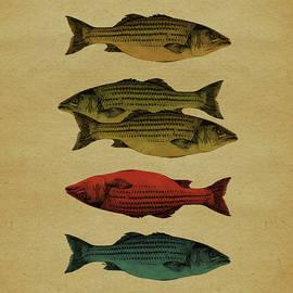 One fish, two fish . . . - Meg Shearer