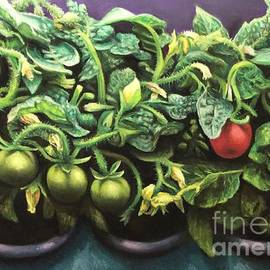 Wendy Koehrsen - One Red Tomato