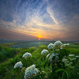 Phil Koch - One Small Step