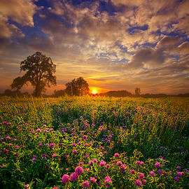 Phil Koch - One Step Closer