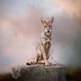 Jordan Blackstone - One - Wildlife Art