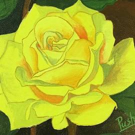 Pushpa Sharma - One yellow rose