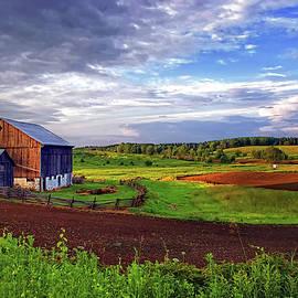 Steve Harrington - Ontario Farm