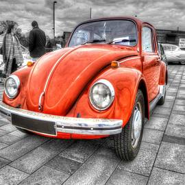 Vicki Spindler - Orange Beetle