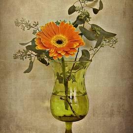 Patricia Strand - Orange Floral