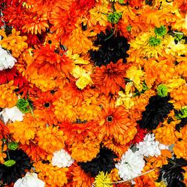 Robin Zygelman - Orange Flower Wall
