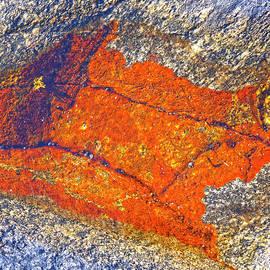 Heiko Koehrer-Wagner - Orange lichen
