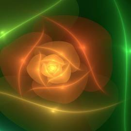 Svetlana Nikolova - Orange Rose