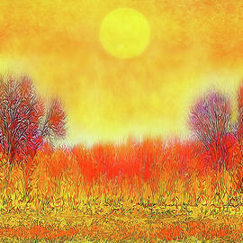 Joel Bruce Wallach - Orange Sunset Shimmer - Field In Boulder County Colorado