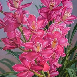 Fiona Craig - Orchid Fever 1 Pink Cymbidiums