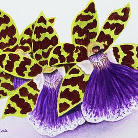 Kerri Ligatich - Orchids - Jumping Jacks