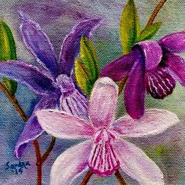 Sandra Maddox - Orchids in Color