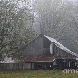 Inge Riis McDonald - Oregon Barn in fog