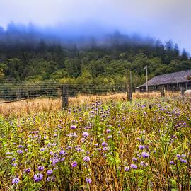 Debra and Dave Vanderlaan - Oregon Scenery