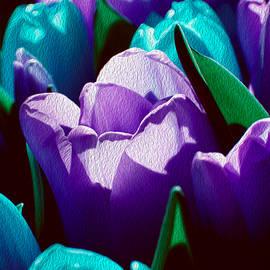 Lali Kacharava - Original tulips