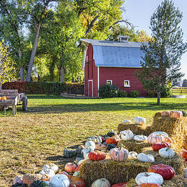 Keith Ducker - Osborn Pumpkin Farm