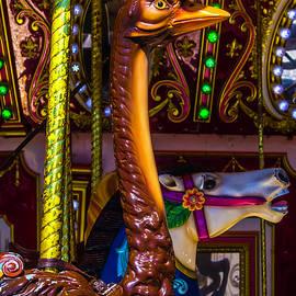 Ostrich Fair Ride - Garry Gay