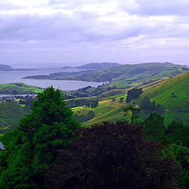 Kevin Smith - Otago Peninsular