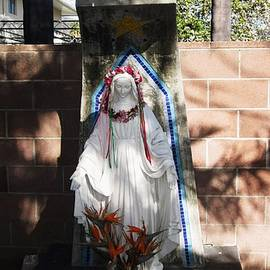 MaryEllen Frazee - Our Lady Statue