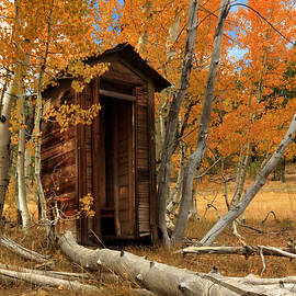 James Eddy - Outhouse In The Aspens