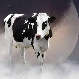 Robin-Lee Vieira - Over The Moon Too