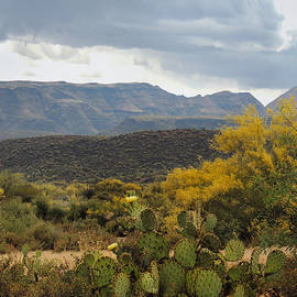 Gordon Beck - Overcast Arizona