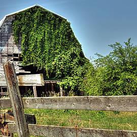 William Sturgell - Overgrown and Dilapidated