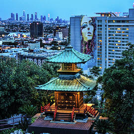 Tommy Anderson - Overlooking LA from Yamashiro Hollywood