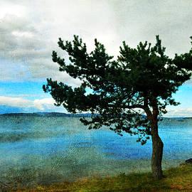 Randi Grace Nilsberg - Overlooking the Ocean