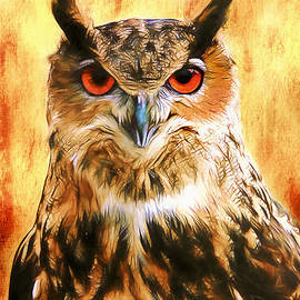 Tina LeCour - Owl Attitude