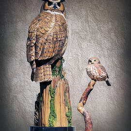 Brian Wallace - Owl Carvings