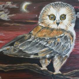 Donna Cook - Owl in Moonlight