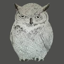 Linda McMillen - Owl Ink Art