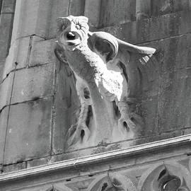 Carol Groenen - Owl Relief on Gothic Building