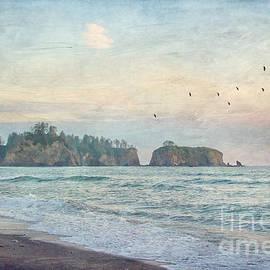 Joan McCool - Pacific Coast Sea Stacks
