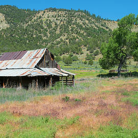 Jerry McElroy - Pagosa Junction Barn