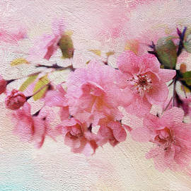 Painted Blossom - Jessica Jenney