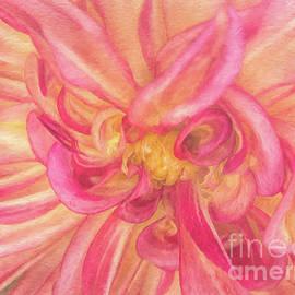 Kim Andelkovic - Painted Dahlia