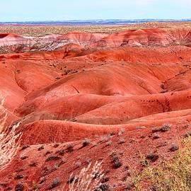 Barbara Zahno - Painted Desert - Arizona