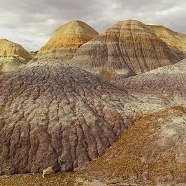 Jeff  Swan - Painted Desert