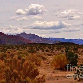 Michael Cinnamond - Painted Desert