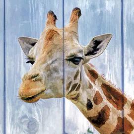 Geraldine Scull   - Painted Giraffe for kids room