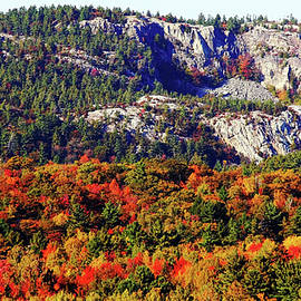Debbie Oppermann - Painted Mountains