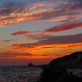 Dianne Cowen - Painted Skies