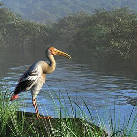 Diana Voyajolu - Painted Stork