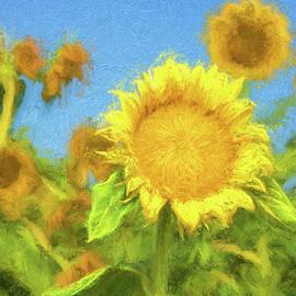Alicia Collins - Painted Sun