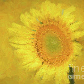 Geraldine DeBoer - Painted Sunflower