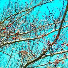 Mioara Andritoiu - Painting Spring 3