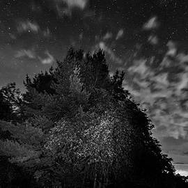 Steve Harrington - Painting The Night 3 - bw