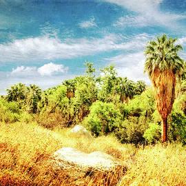 Sandra Selle Rodriguez - Palm Grove